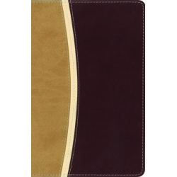 ANGLAIS, BIBLE AMPLIFIED, COMPACT, SOUPLE CUIR DUO BEIGE/CHOCOLAT