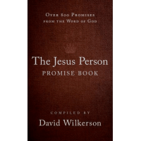 JESUS PERSON PROMISE BOOK (THE) - GIFT EDITION